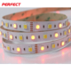 Alibaba Wholesale 5050 RGB CCT Waterproof 12V LED Light Strip IP 65