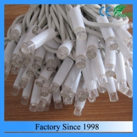 100 Led Bulbs IP65 Rubber Wire Led Fairy Light
