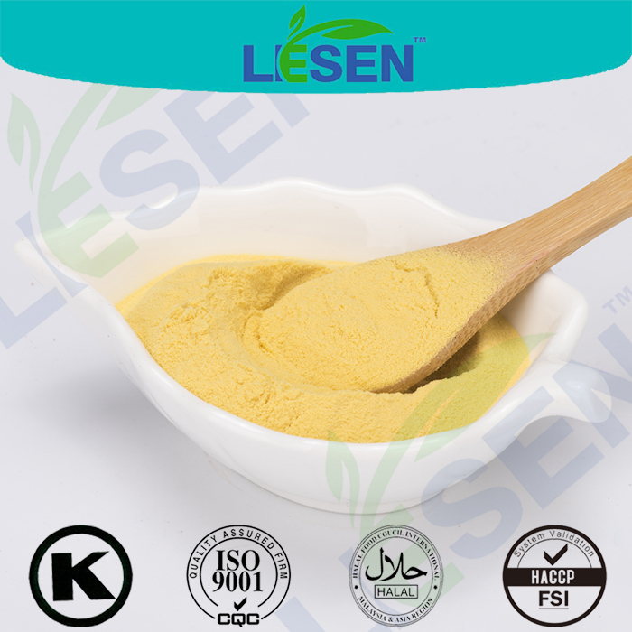 Hot Selling Feed Grade Yellow Corn Protein Powder