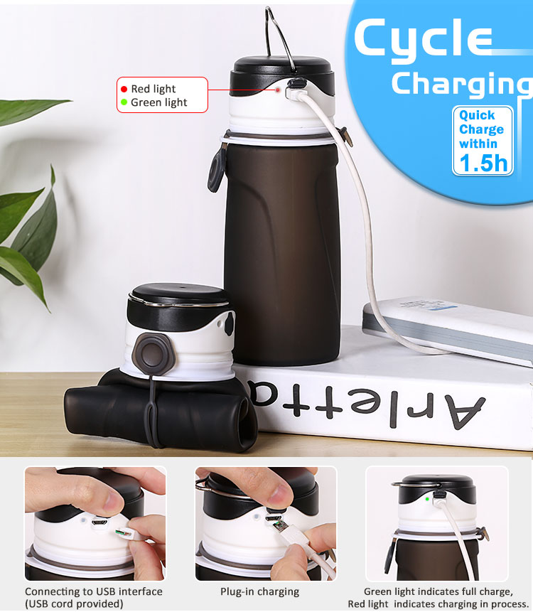 New Promotion Custom Accept Collapsible Innovative Water Bottle