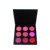 Best price OEM multicolor cosmetics blush palette