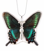 Hot sale Unique and beautiful REAL butterfly necklace jewelry