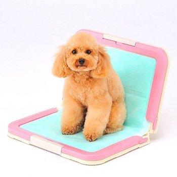 Dog\'s Toilet Tray \