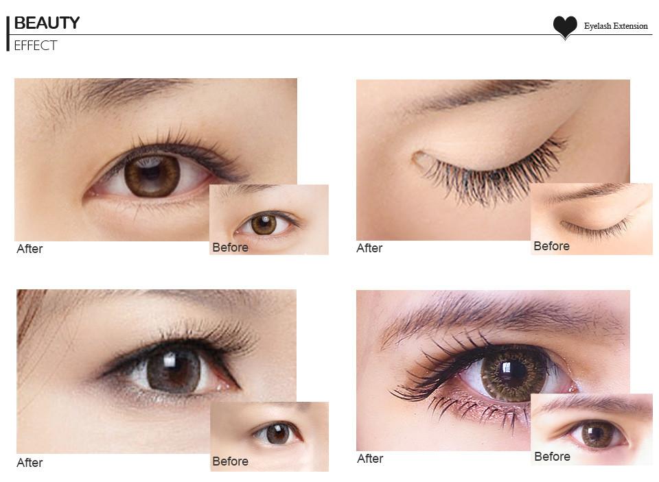 fca9353de21 Best Quality Eyelash Wholesale J,B,C,C,Cc,D Curl Mink Eye Lash ...