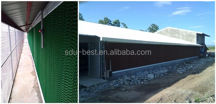 Easy installation steel structure building prefab chicken poultry farm house