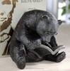 Garden funny bear sitting and reading book with glasses