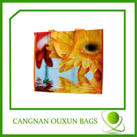 eco friendly laminated woven pp/pe shopping bags