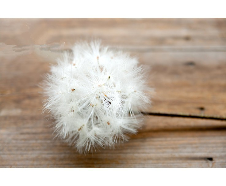 2019 Hot Sell Usa High Imitation Artificial Dandelion