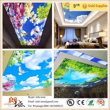 Project easy to clean heat resistant ECO Printed film and UV Printed film 3d effect different types of ceiling design