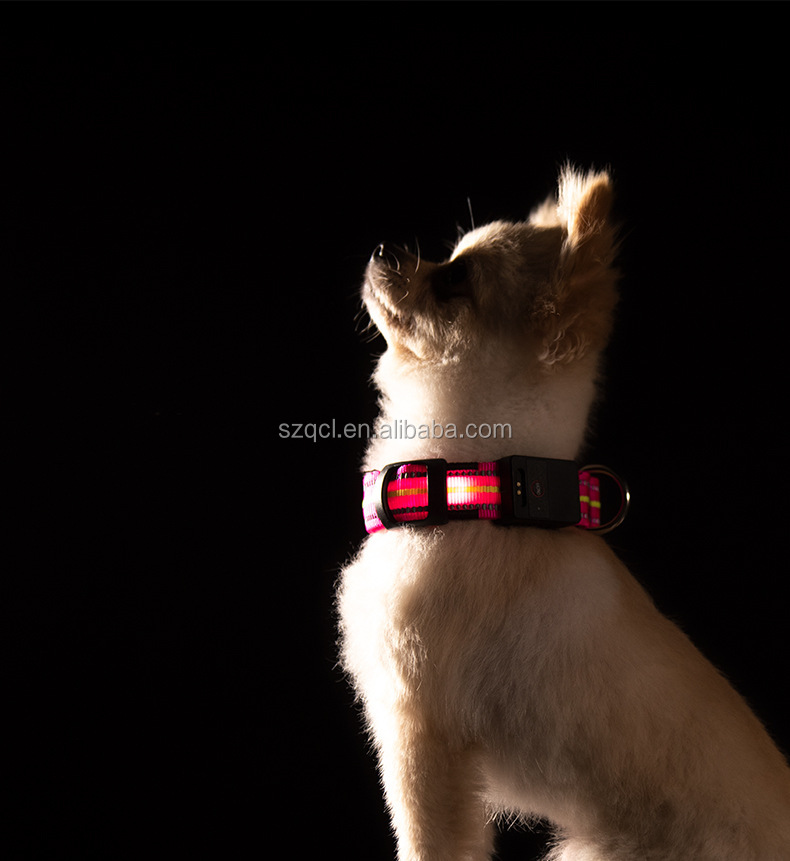 2019 Newest Item Nylon Dog Collar LED Flashing Dog Leashes Reflective Collar USB Magnet Charging Port Waterproof
