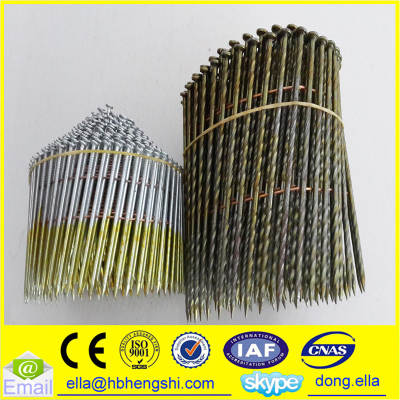 Hot dip galvanized screw coil nail suitable for soft and hard wood pallet
