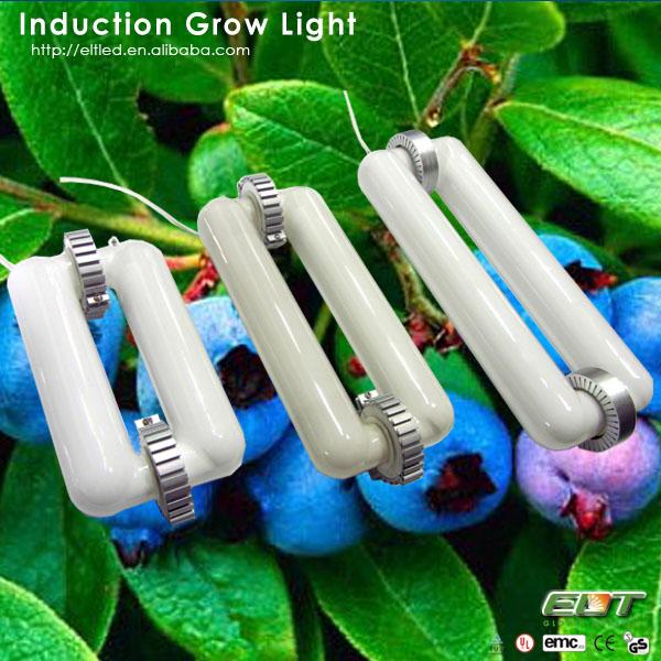 luces para invernadero