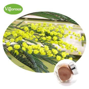 100 Pure Natural Acacia Rigidula Extract Powder Buy Acacia