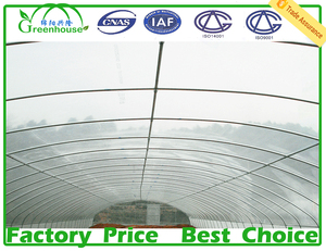 MYXL hot sale used high tunnel green house for commercial agriculture