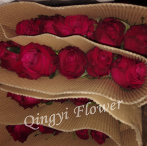online bouquet delivery Fresh Cut Rose Flower Importers