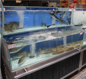 Dingfeng customized ECO supermarket or restaurant 2 layer chiller or heater  protein skimmer live fish tank aquarium