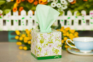 Newest Design High Quality Toilet Paper , Cube Colored Box Facial Tissue