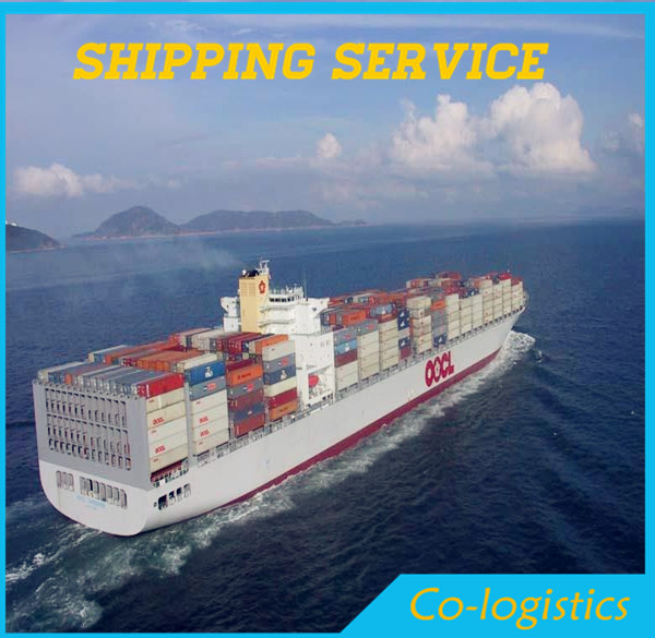 sea shipping from China ------ ben(skype:colsales31)