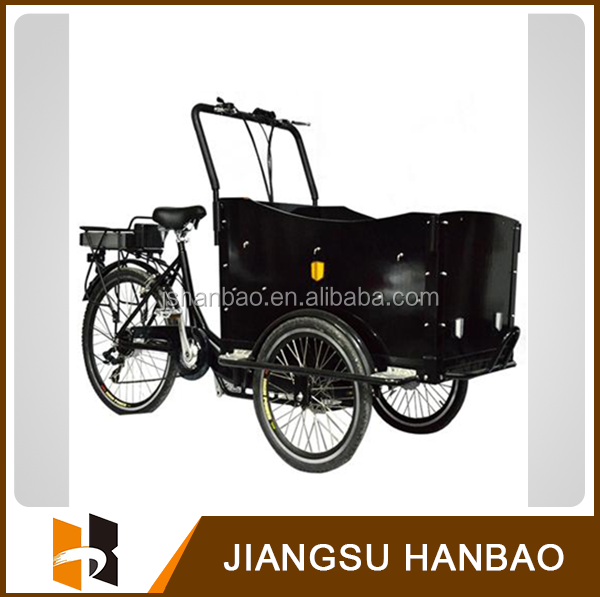 Electric cargo trike/cargo trike for family