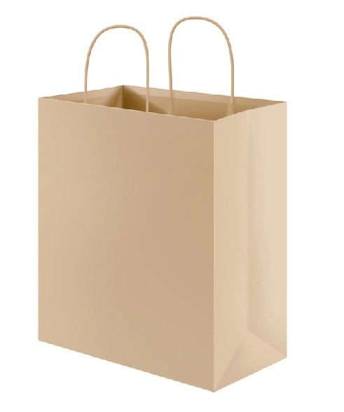 Hot Promotional Delivery 100% Recycled Fruit Protect Paper Bag