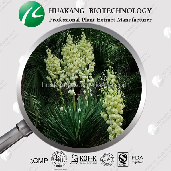 100% Natural Yucca Extract
