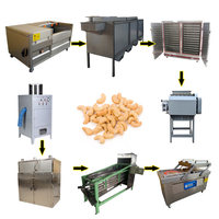 cashew nuts processing machine Hot Selling Cashew Nut Peeling Machine cashew nuts steam cooker machine