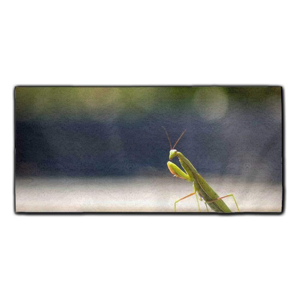 Baerg Microfiber Super Absorbent Face Towel Small Grasshopper Hair Care Towel Gym Spa Towel