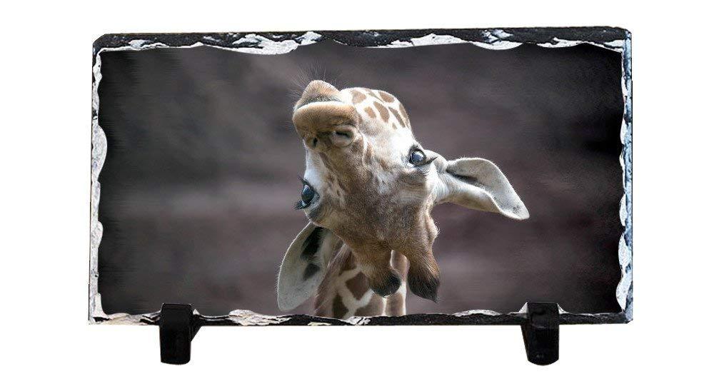 DKLZY Personalized Christmas Family Rules Slate Plaque, Giraffe slate for painting