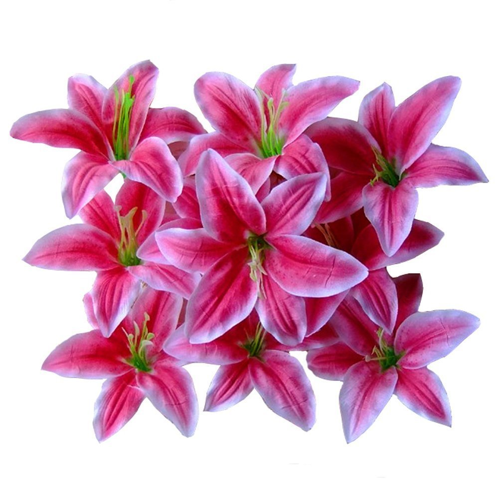 Cheap Pink Tiger Lily Find Pink Tiger Lily Deals On Line At Alibaba