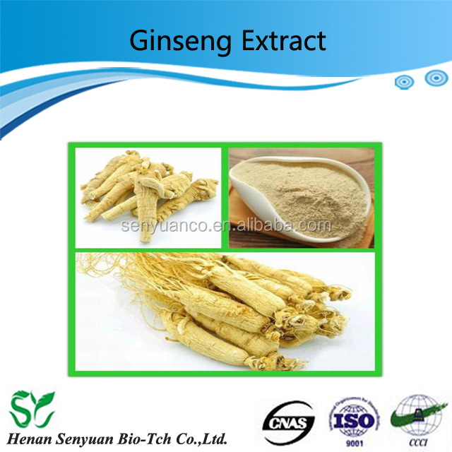 Senyuan Supply Natural panax ginseng extract