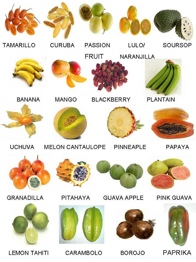 list of fruits and vegetables frais fruits exotiques fruits congel 233 s fruits pulps 30735