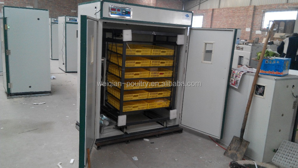 Cheapest price 1000 egg incubator hotsale in ecuador