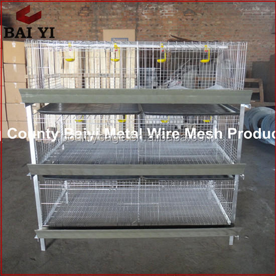 Poultry Battery Cages Broiler Chicken Cage For Sale In