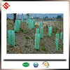 ECO-friendly PP coroplact Sheet Corflute plastic Tree Guard