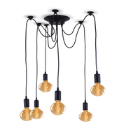 TL Hot Selling Adjustable Vintage Metal Chandelier Pendant Lights Chandelier Luxury Spider Lights