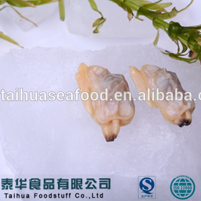 Frozen Clam Meat And All Kinds Of Seafood Name For Sale - Buy Frozen Clam  Meat,Frozen Clam Meat And Kinds Of Seafood,Frozen Clam Meat And Kinds Of