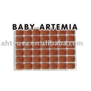 Frozen Baby Artemia Buy Fish Feeds Frozen Baby Artemia