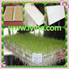 wheat alfalfa barley sorghum corn grain seed planter tray , plastic tray plate with cheap price