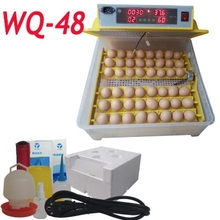 New 48 Eggs Digital egg Incubator Chicken Duck Goose high rate high quality egg Incubator
