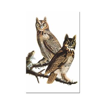 100 El Yapımı Hayvan Sanat Iki Güzel Baykuşlar Tuval üzerine