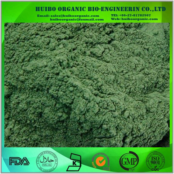 Bulk organic chlorella powder manufacturer wholesale with best price