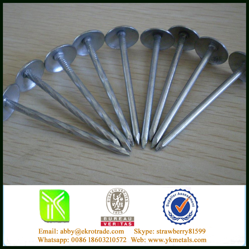 "Umbrella Galvanized Roofing Nails, 1""-4"" Shank Length"