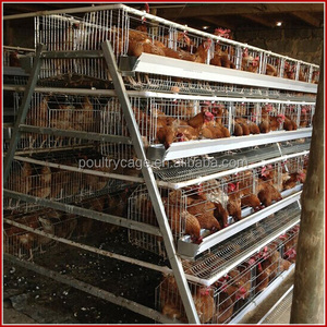 Baiyi Sale New Design Stainless Steel Layer Egg Breeding Chicken Cage Made In China