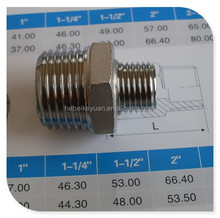 "Type 316 Hex Nipple Reducer with BSPT Taper Thread 1/2""x 1/4"""
