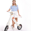 Smart Charge 2 Wheel Aluminum Alloy Material electric scooter