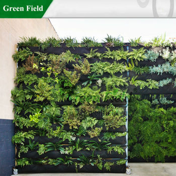 green field vertical garden system living walls vertical. Black Bedroom Furniture Sets. Home Design Ideas