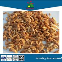 Exporter Shrimp Larva Fish Tank Food Meal Feed
