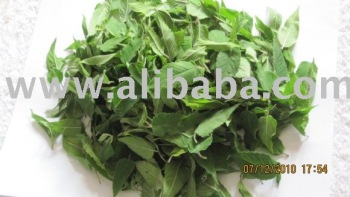 Bergamot Herb,Dried - Buy Organic Herbs Product on Alibaba.com