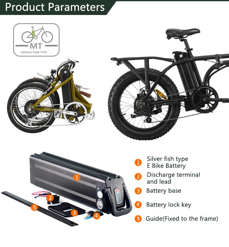 Batteria agli ioni di litio 36 v 20Ah silver fish bicicletta bici elettrica della batteria con BMS
