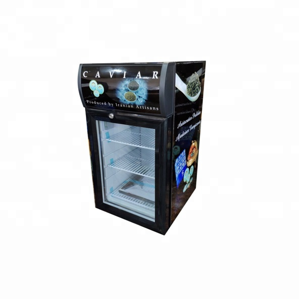 21L custom desktop mini bier koelkast SC21B
